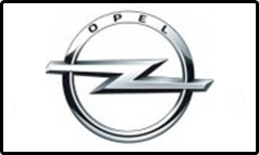 Aceite OPEL GM